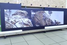 панно на стену с фотопечатью